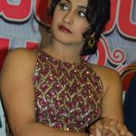 Regina Cassandra at Saravanan Irukka Bayamaen Success Meet