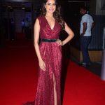 Actress Pragya Jaiswal Stills From 64th Film Fare Awards 2017