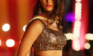 Actress Pooja Hegde in DJ Duvvada Jagannadham Telugu Movie