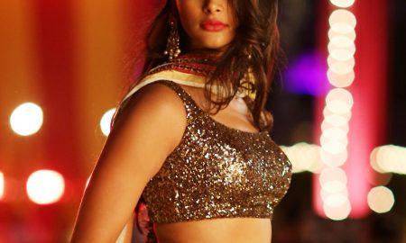 Actress Pooja Hegde in DJ Duvvada Jagannadham Telugu Movie