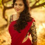 Ramya Pandian Portfolio Images