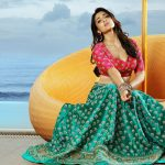 Shriya Saran Hot Photoshoot HD Photos