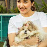 Actress Raashi Khanna